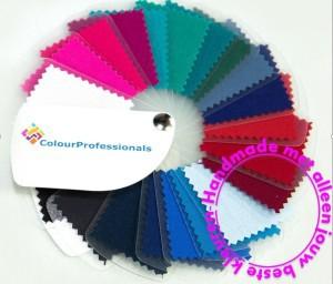 Kleurenanalyse met een persoonlijke kleurenwaaier